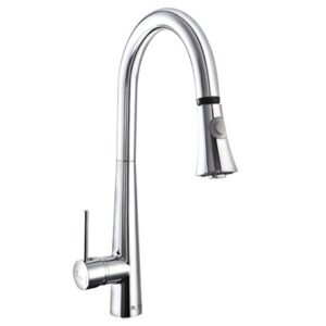 Risco Shuttle Kitchen 2 Faucets